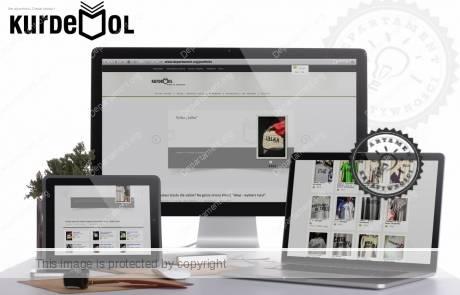 proejktowanie sklepow e-commerce